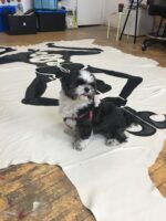 Image shows a small black and white dog sitting on top of a large painted textile which is displayed across a hardwood floor.